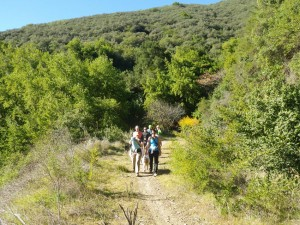 easy-hike-850